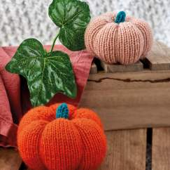 Pumpkins Knitting Pattern