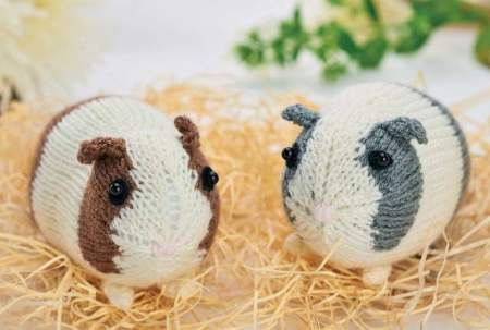 Easy Knitted Guinea Pigs Knitting Pattern
