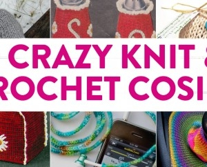 9 Crazy Knit & Crochet Cosies That You Didn't Know There Were Patterns For!