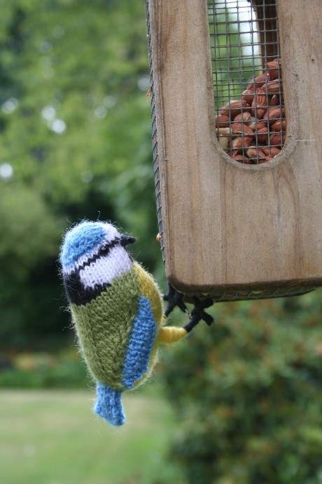 UPDATED FOR 2019! 15 Knit & Crochet Patterns For Springwatch Fans Knitting Blog