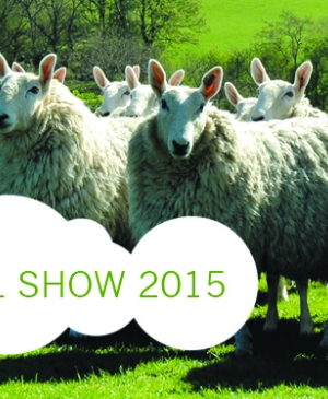 Let's Knit Bumper Giveaways: Tickets to the British Wool Show 2015