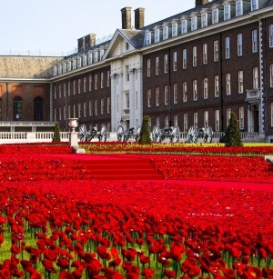 Knitted and crocheted poppies take centre stage at Chelsea Flower Show