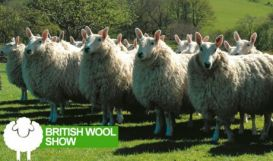 Win Tickets to the British Wool Show