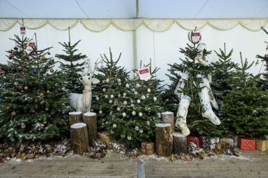 Country Homes & Interiors Christmas Show