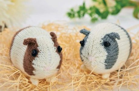 Easy Knitted Guinea Pigs